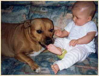 Photo of Bonnie 4 year old SBT with Ella at 6 months.