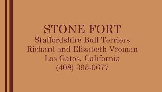 Stone Fort Business Card